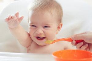 Beikost als Teil der Ernährung in den ersten 12 Monaten